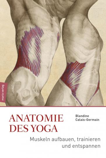 Anatomie des Yoga. Muskeln aufbauen, trainieren und entspannen.