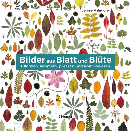 Bilder aus Blatt und Blüte. Pflanzen, sammeln, pressen und komponieren.