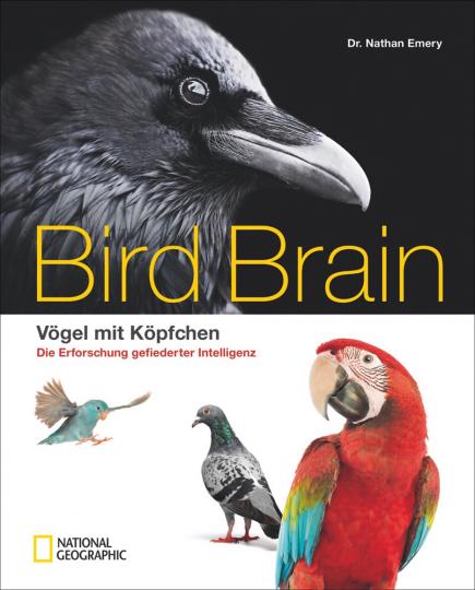 Bird Brain. Vögel mit Köpfchen. Die Erforschung gefiederter Intelligenz.