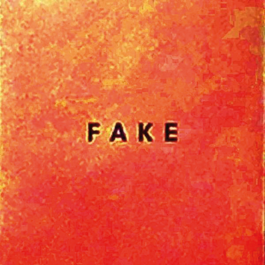Die Nerven. Fake. CD.