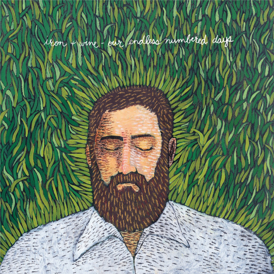 Iron And Wine. Our Endless Numbered Days. Vinyl LP.