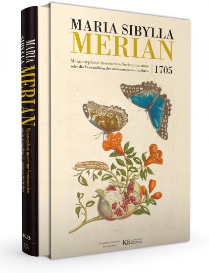 Maria Sibylla Merian. Metamorphosis insectorum Surinamensium. Die Verwandlung der surinamischen Insekten, 1705.