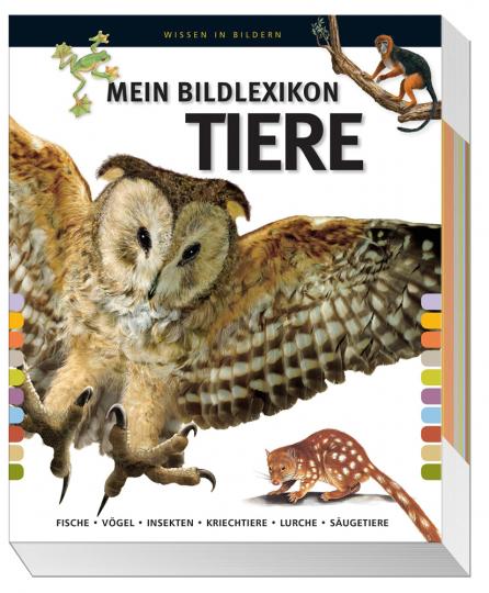 Mein Bildlexikon Tiere. Fische, Vögel, Insekten, Kriechtiere, Lurche, Säugetiere.