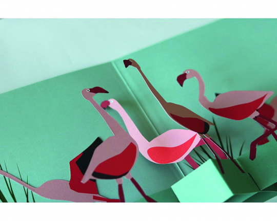 Pop-Up Grußkarte Flamingos.