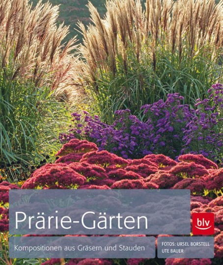 Prärie-Gärten. Kompositionen aus Gräsern und Stauden.