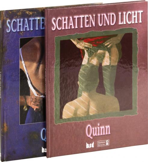 Schatten und Licht. Teil 3. Graphic Novel.