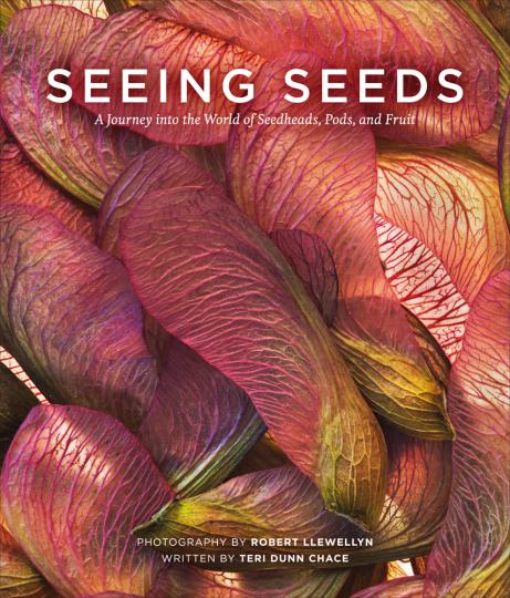 Seeing Seeds. Eine Reise in die Welt der Samen und Früchte.