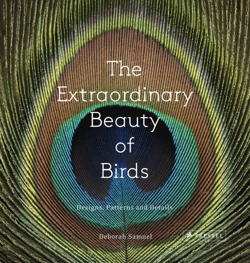 The Extraordinary Beauty of Birds. Designs, Muster und Details.