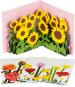 Pop-Up Grußkarten Set »Die Blumenfelder«. Bild 1