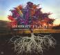 Robert Plant. Digging Deep: Subterranea (Limited Edition). 2 CDs. Bild 1
