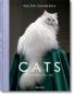 Walter Chandoha. Cats. Bild 1