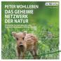 Peter Wohlleben. Das geheime Netzwerk der Natur. Wie Bäume Wolken machen und Regenwürmer Wildschweine kontrollieren. mp3-CD. Bild 2