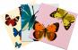 Pop-Up Grußkarten Set »Die Schmetterlinge«. Bild 2