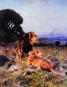 König der Tiere. Wilhelm Kuhnert und das Bild von Afrika. Bild 3