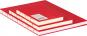Mittelgroßes Skizzenbuch mit linierten Seiten, rot. Koptische Bindung. Bild 3
