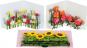Pop-Up Grußkarten Set »Die Blumenfelder«. Bild 3