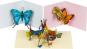 Pop-Up Grußkarten Set »Die Schmetterlinge«. Bild 3