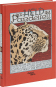 Der Held im Pardelfell. Eine georgische Sage von Schota Rustaweli. Vorzugsausgabe mit Originalgrafik »Löwe und Leopard«. Bild 4