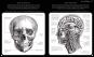 Der menschliche Körper. Eine Entdeckungsreise mit der Röntgenlupe. Bild 4
