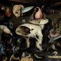 Hieronymus Bosch. Meisterwerke im Detail. Bild 5