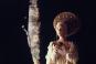 Monty Python's Jabberwocky. Mediabook. Bild 6